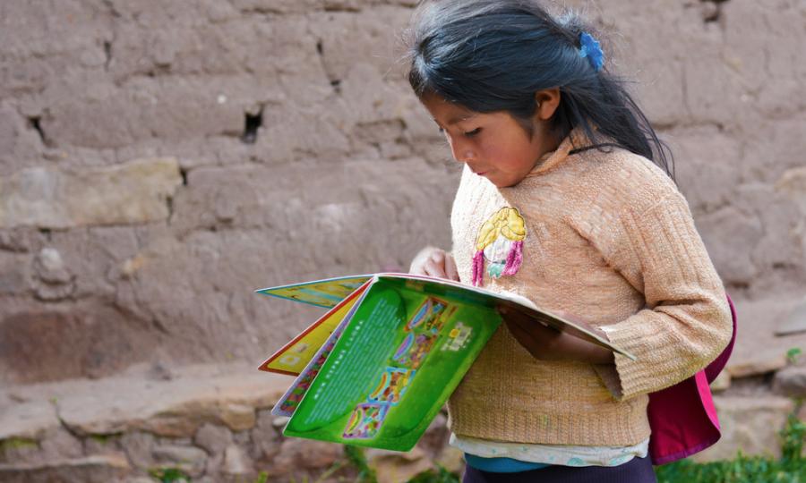 Pinceladas del sistema educativo de México